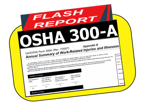 300A-Flash Report